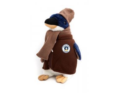 来菲利普岛自然公园与小企鹅共度新年